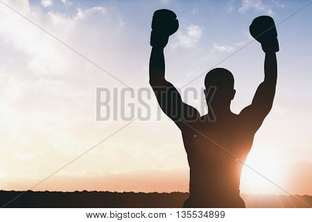 Boxer posing after victory against sun shining