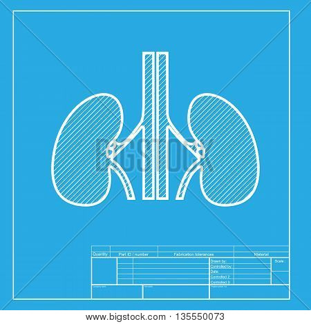 Human kidneys sign. White section of icon on blueprint template.