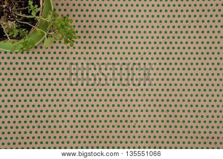 Craft  Paper Background In Green Polka Dots And Flower In Corner