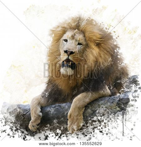 digital painting of  resting lion