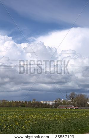 Rapeseed field and impressive cloudscape near Greifswald Germany.