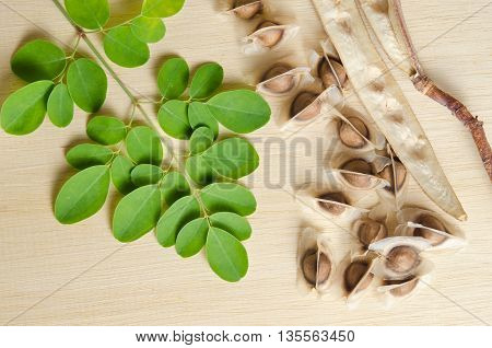 Moringa (Other names are Moringa oleifera Lam. MORINGACEAE Futaba kom hammer vegetable hum hum bug Moringa bug Hoo) leaf and seed