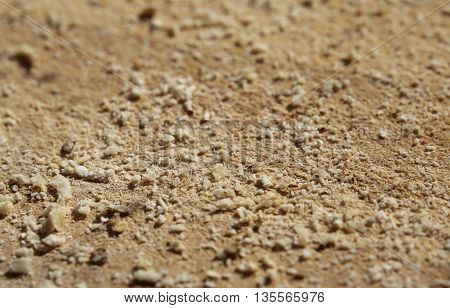 Macro Of Bread Crumbs Lying On A Wooden Slat