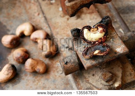 Peeling cashew nuts shell with machine selective focus