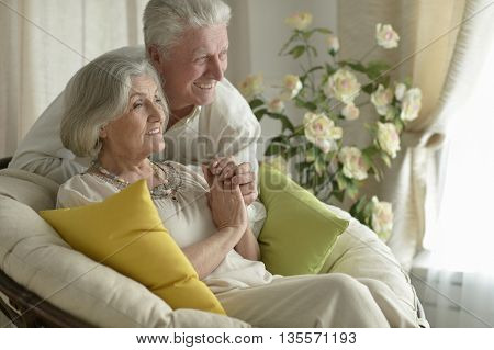 Portrait of a happy senior couple resting at home