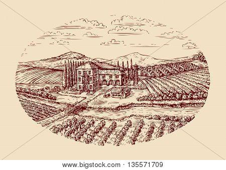 Italy. Italian rural landscape. Hand-drawn sketch vintage vineyard, farm, agriculture farming