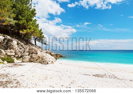Summer vacation background texture panorama of seascape with greek Marble Beach in Thassos Island, Greece with turquoise water and pine trees