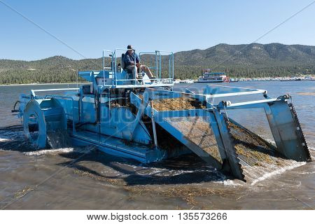 Big Bear Lake California June 17 2016 - An aquatic weed harvester removes weeds from the lake in preparation for the Big Bear Triathlon June 18 2016