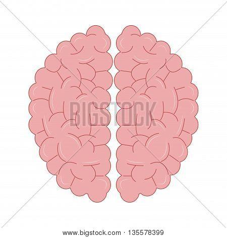 flat design of human brain topview icon vector illustration