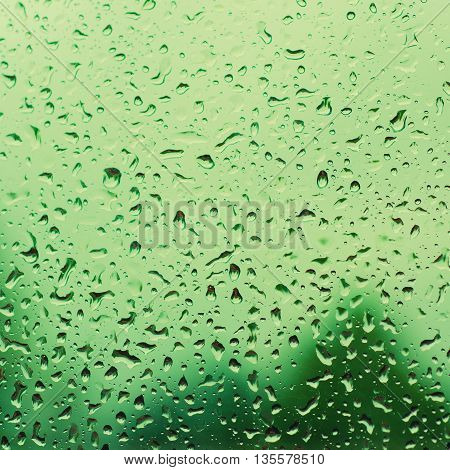 Rainy wet green eco seasonal summer natural blurred background with water drops