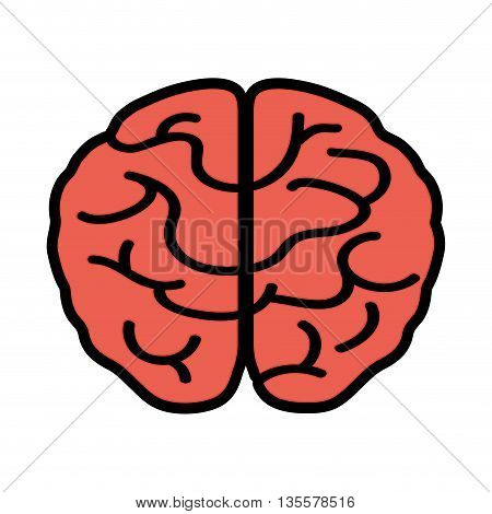 Human organ  represented by brain  icon over isolated and flat background