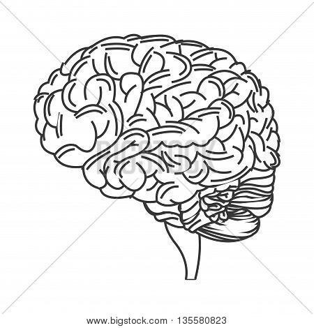 line design of human brain icon vector illustration