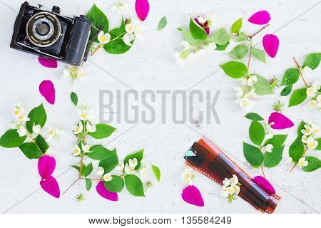 Cosmos and jasmine flowers with retro camera flat lay scene with copy space