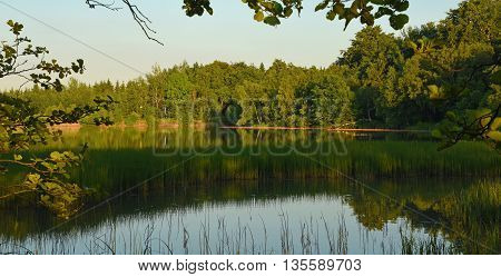 Summer evening near pond near village Tisa