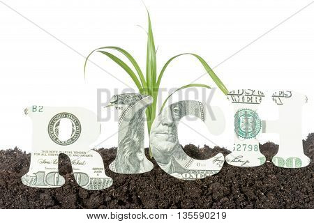 Sprout in soil in the background the word rich carved out of hundred-dollar bills in the foreground isolated on white background