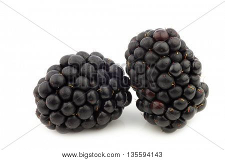 fresh blackberries on a white background