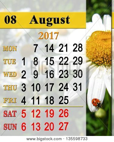calendar for August 2016 with ribbon of ladybirds on the white camomile