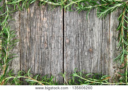 Old wooden background with rosemary frame. Kitchen background