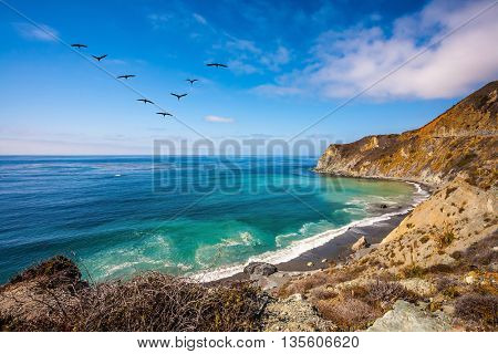 In the sky flies a flock of cranes. The scenic road passes over the ocean bay with emerald water. California State Route 1, USA