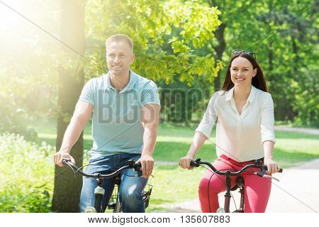 Young Happy Couple Riding Bicycle In Park
