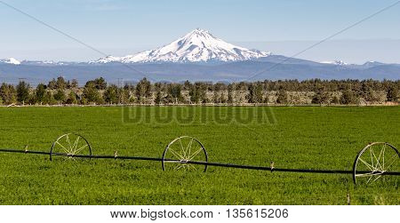 Mount Jefferson Stands Majestic Oregon Cascade Mountain Range