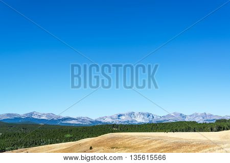 Forest And Bighorn Mountains