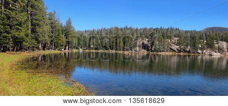 Scenic woods lake landscape in eastern Sierra mountains in California