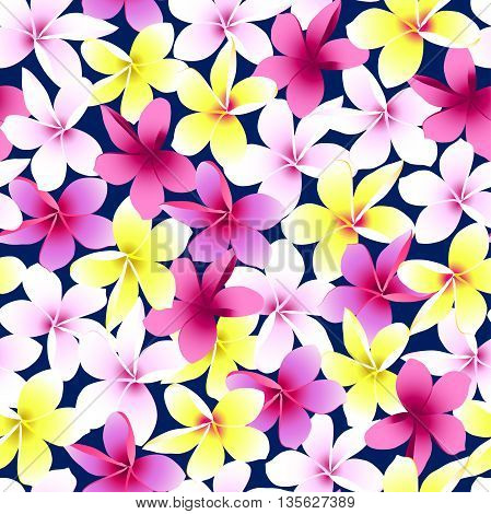 Tropical colorful frangipani plumeria flower seamless pattern .