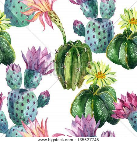 Watercolor seamless cactus pattern. Watercolour cacti background