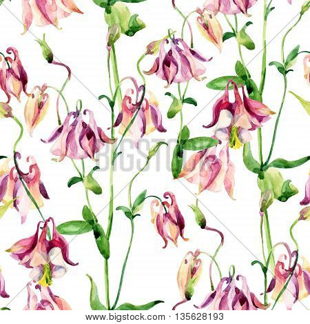 Watercolor meadow bellflowers seamless pattern. Watercolor wild columbine flowers on white background. Hand painted illustration