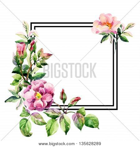 Watercolor brier flowers card. Pastel colored Dog Rose branches with black square frame on white background. Hand painted illustration with paper texture