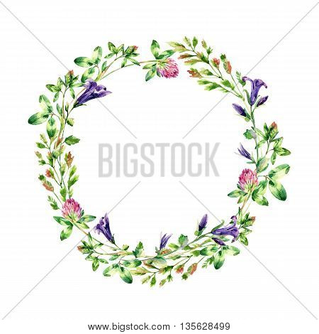 Watercolor wild flowers wreath. Bell flower clover weeds and meadow herbs. Watercolor wild field wreath. Hand painted floral illustration