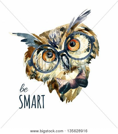watercolor hipster owl in glasses. Long-eared owl head. Watercolor cute owl isolated on white background. Wise bird dressed in retro styled glasses. Hand painted illustration of hipster owl portrait