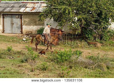Trinidad Cuba - January 14 2016: Trinidad's residents still use horses for transportation. Cuba has one of lowest vehicle per capita rates in the world. In Cuba sits the local cowboys Gaucho in the saddle all day. They are a regular part of the local life