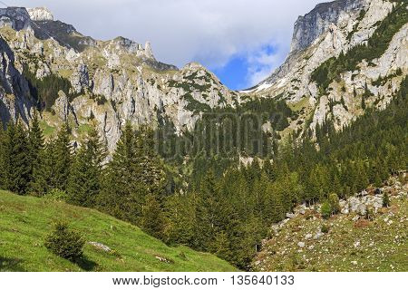 Beautiful mountain scenery in the Carpathians in summer