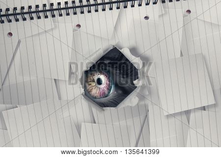 Orange and pink eye on grey face against view of a notebook
