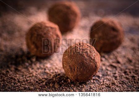 Truffle chocolate candies with cocoa powder, studio shot