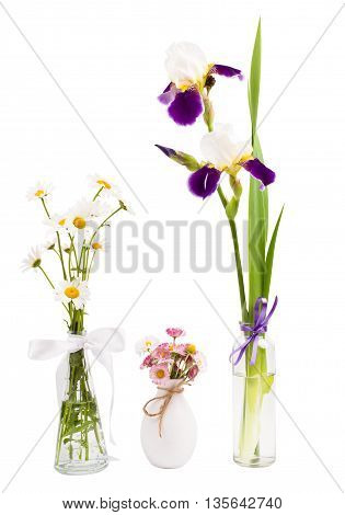 cultivated flowers in a vase on a white background