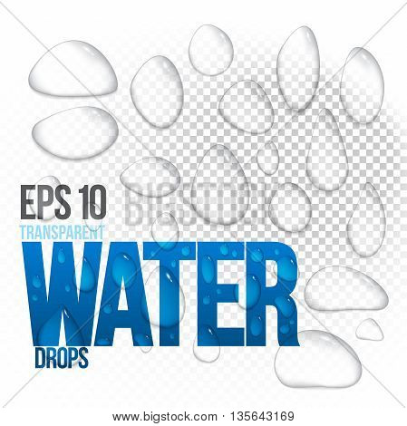 Vector illustration of realistic transparent shiny water drops EPS 10. Isolated objects easy to place on any background