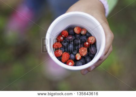 Plastic white cups with different berries closeup. The glass holds hand of the child.