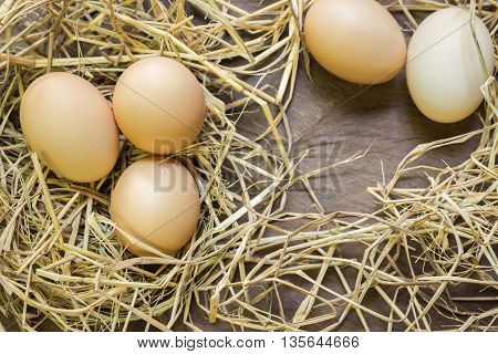Eggs with rice straw on wooden background with text; twins concept