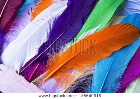 Pile of the colorful artificial feathers close up