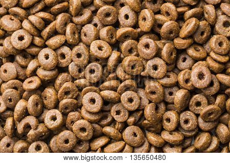 Dry kibble dog food background.