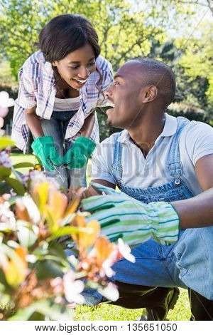 Young couple gardening together in their garden