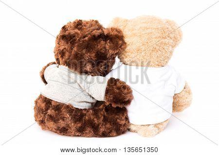 Friendship two cute little bears; friendship in diversity