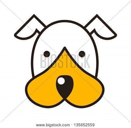 Jack russell terrier puppy head getting out in front of white background. Domestic purebred pup pedigree adorable puppy head portrait. Terrier small doggy puppy head young animal character.