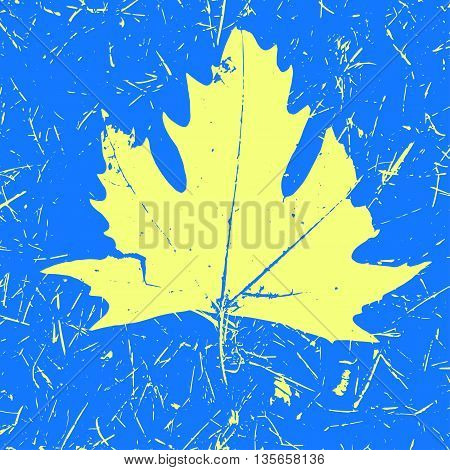 Grunge Maple Leaf blue and yellow colors. Autumn print vector illustration. Imprint grunge art colorful