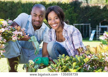 Portrait of young couple gardening together in their garden