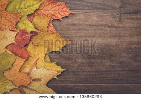 colorful autumn leaves on the wooden background