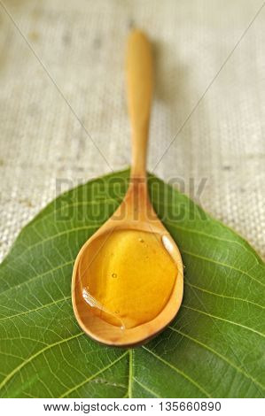 honey in a wooden spoon on leaf